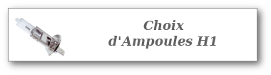 Choix d'ampoules H1